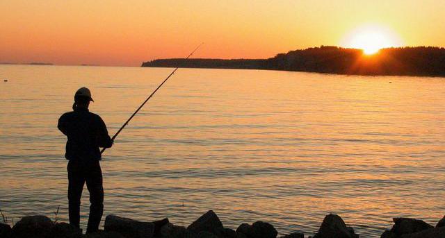 в тих месячн ночь мы отправились на рыбную ловлю